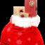 Посрещане на Коледа по света